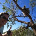Ich bei den Koalas