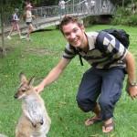 Kangaroo-Gehege