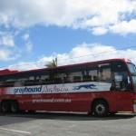 Greyhound-Bus