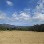 Auf dem Tasman-Highway