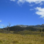 Cradle Mt. Nationalpark