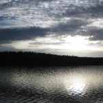 Seenlandschaft vor Hamilton
