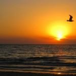 Sonnenuntergang in Glenelg